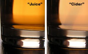 The difference between apple juice and cider.